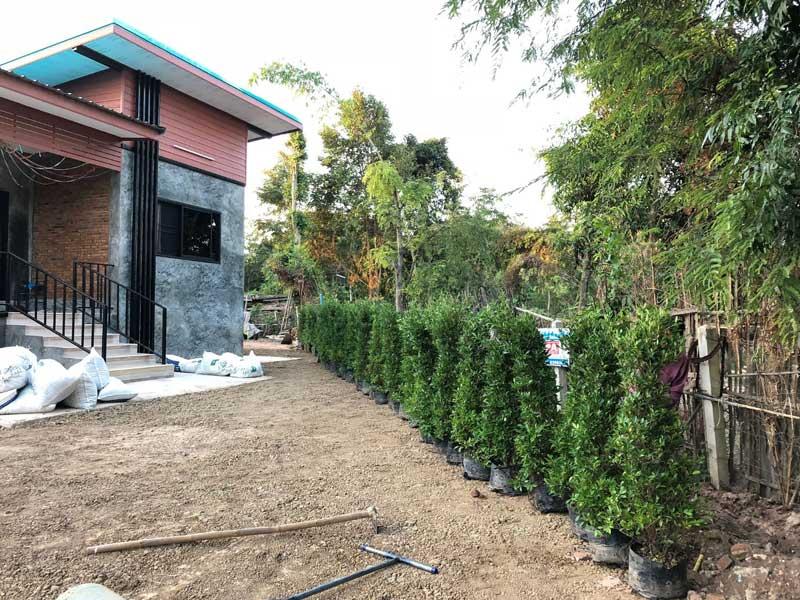 จัดสวนหน้าบ้านสไตล์ลอฟท์